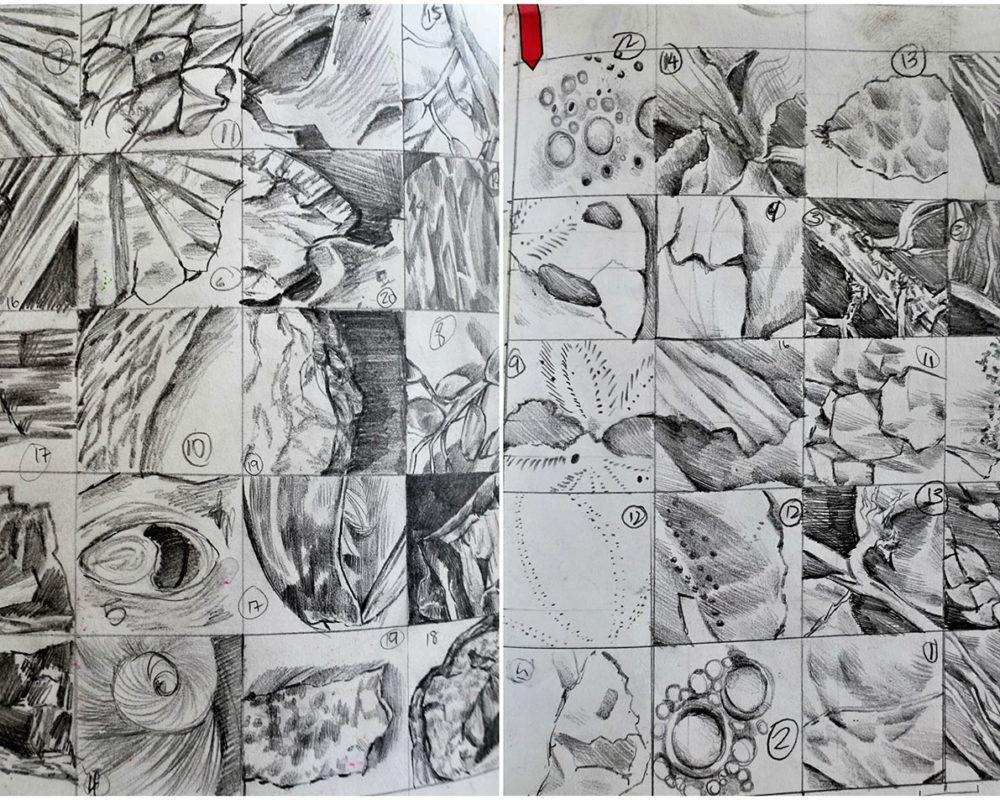 Graphite Drawing, Victoria Lin