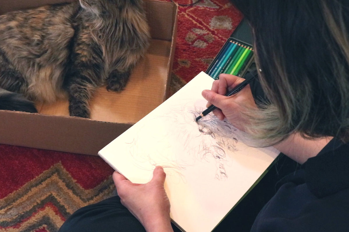 How to Draw Cats with Colored Pencil and Marker