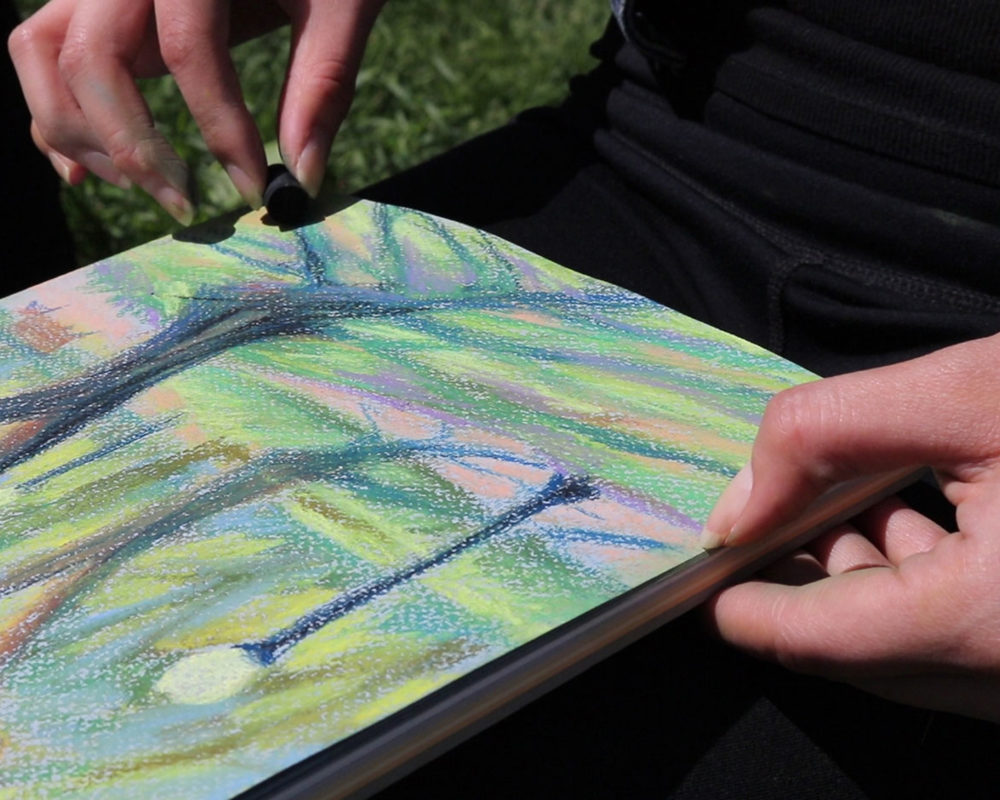 Plein Air Soft Pastel Drawing, Cat Huang