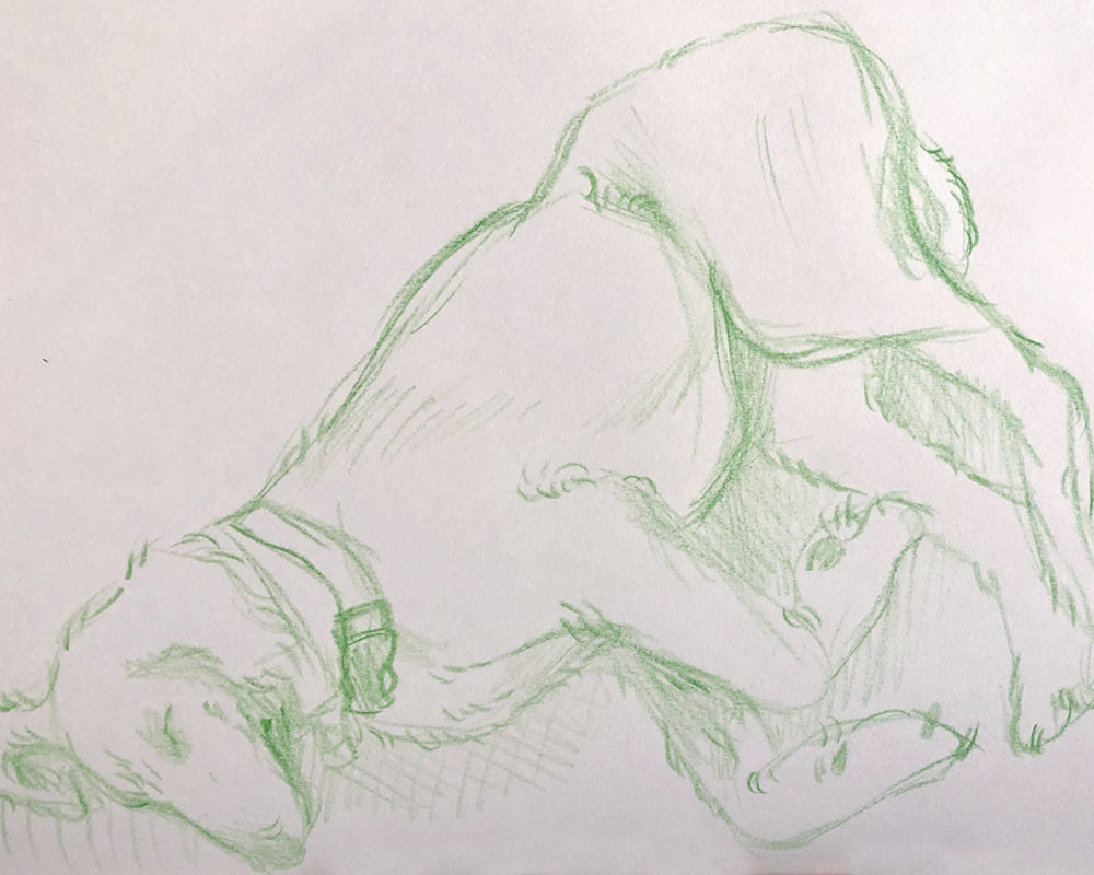 Colored Pencil Sketch, Eiligh Orff
