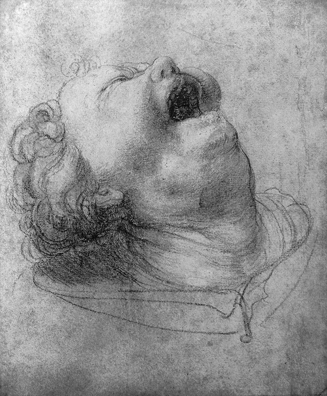 Matthias Grünewald, Head of a Shouting Man, 1520