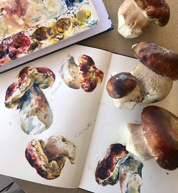 Mushroom Still Life Watercolor Painting, Clara Lieu