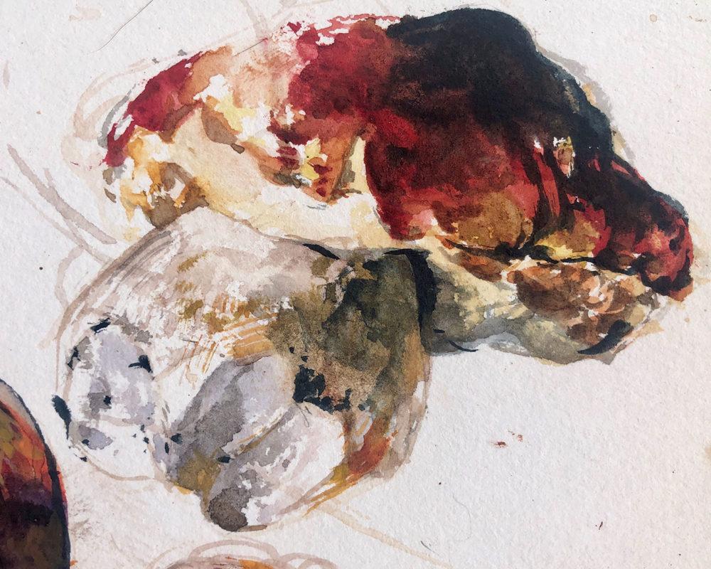 Mushroom Still Life Watercolor Painting, Clara Lieu
