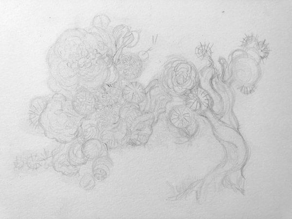 Pencil Sketch, Song Kang