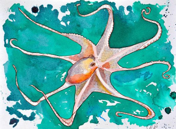 Watercolor & Ink Drawing, Marina Marinopoulos