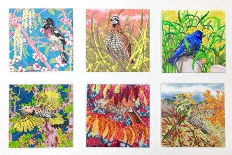 Bird Marker Drawings, Lauryn Welch