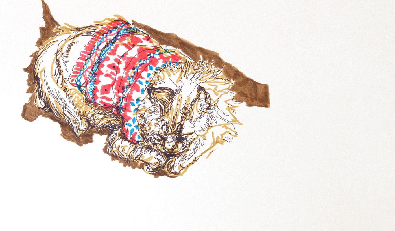 Cat Gesture Drawing, Marker, Lauryn Welch