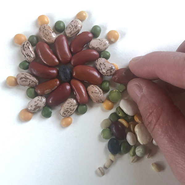 Home Art Supplies: Bean Mosaic