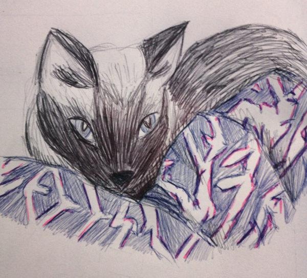 Emily Paxman, Ballpoint Pen Drawing