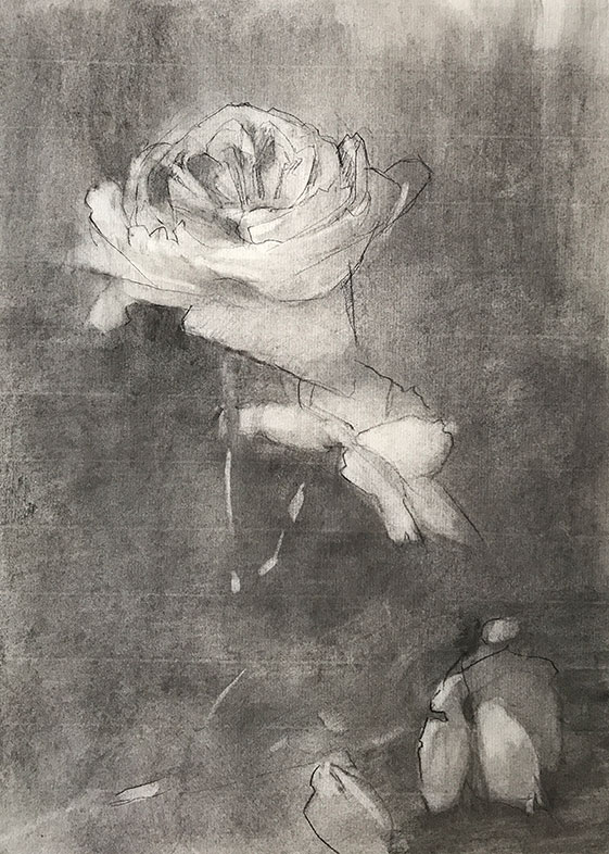 Kathleen Speranza, charcoal drawing