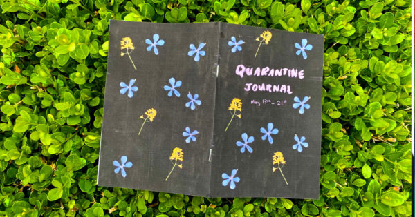 Quarantine Journal, Julie Sharpe