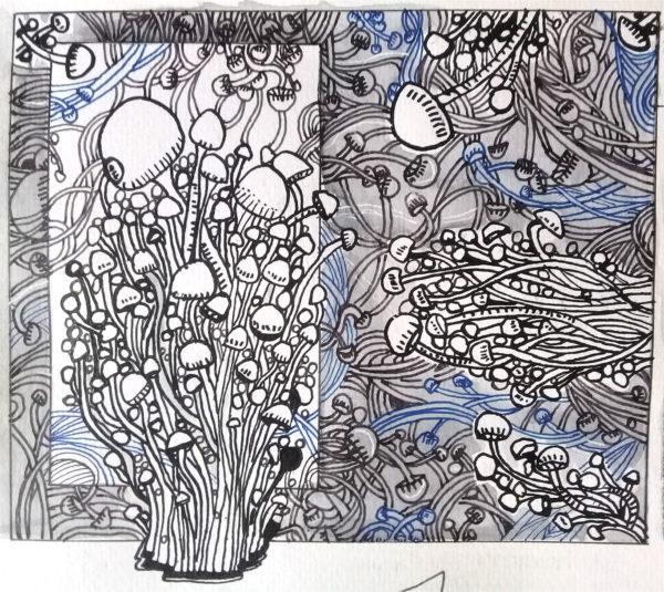 Noor-ul-Nihar Malik, Pen Drawing