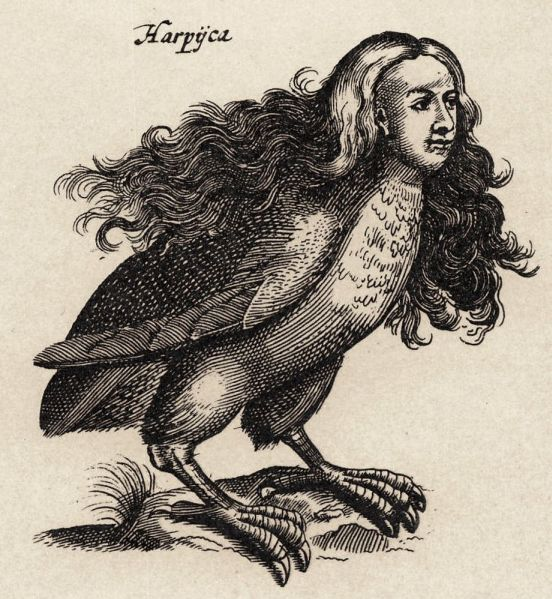 Harpy from Ulisse Aldrovandi's Monstrorum Historia
