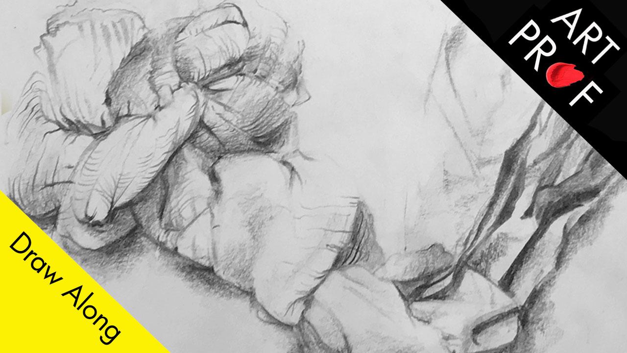 Art Prof Draw Along, Pencil Drawing