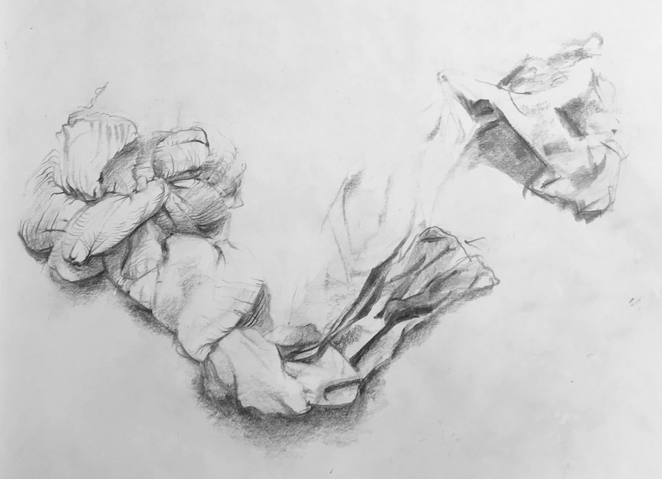 Graphite Drawing, Prof Clara Lieu