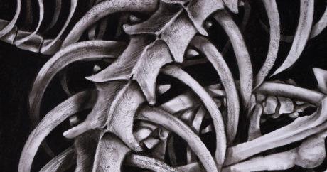 Karas C., Art School Admissions Portfolio