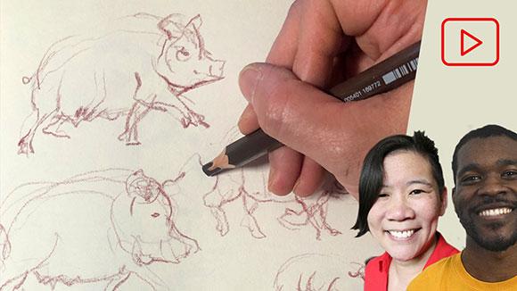 Gesture Drawings of Animals