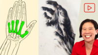 Anatomy for Artists: Hands