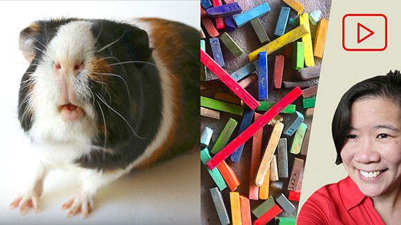 Drawing Guinea Pigs in Soft Pastel